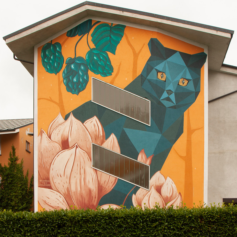 Murale scuola Cuneo Riccardo Ten Colombo Totale.jpg