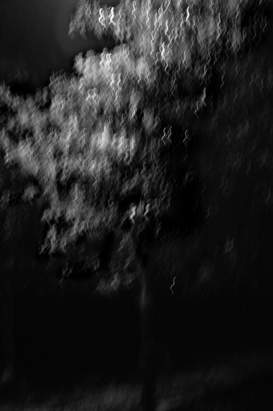 Nocturne 17