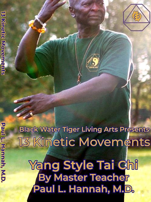13 Kinetic Movements of Yang Style Tai Chi