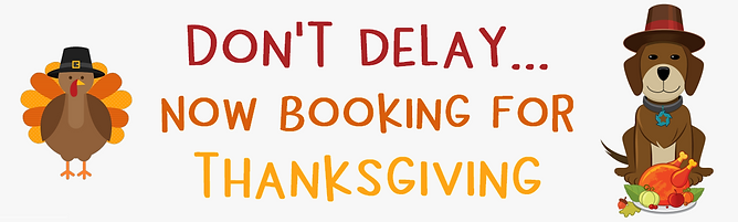 Schedule pet sitter visits for Thanksgiving