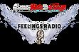 Feelings Radio First ever Logo