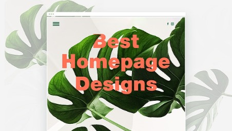 25 Best Homepage Designs Plus Tips for Making Your Own