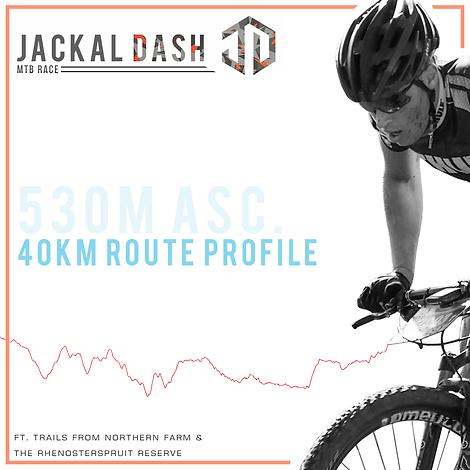 40km route profile.png