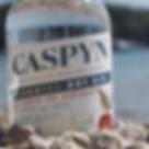 Caspyn Gin.png