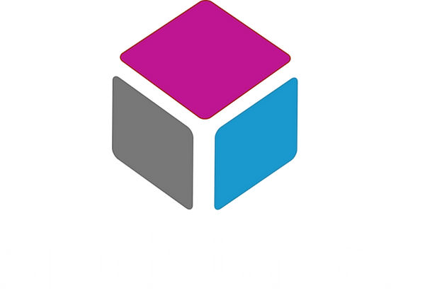 Logo BIGDATABOX