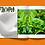 Thumbnail: Flora Zine: Mom/s Houseplant Edition