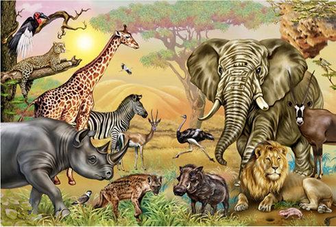 Wallpaper Africa