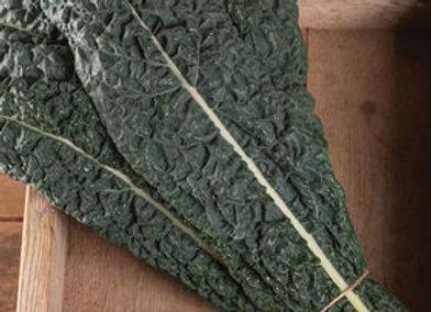 Kale, Lacinato (bunch)