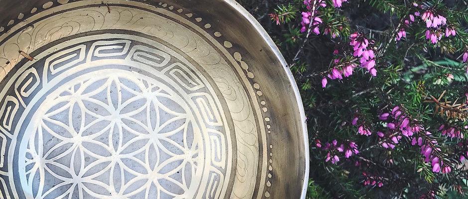 Escape To Serenity FREE Meditation