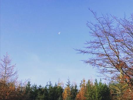 Lunar Living | Part 1