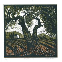 Sharon_Pallent-The_Olive_Tree 1