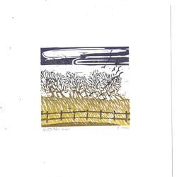 October Wind - F Finn - Hazelnut Press 2