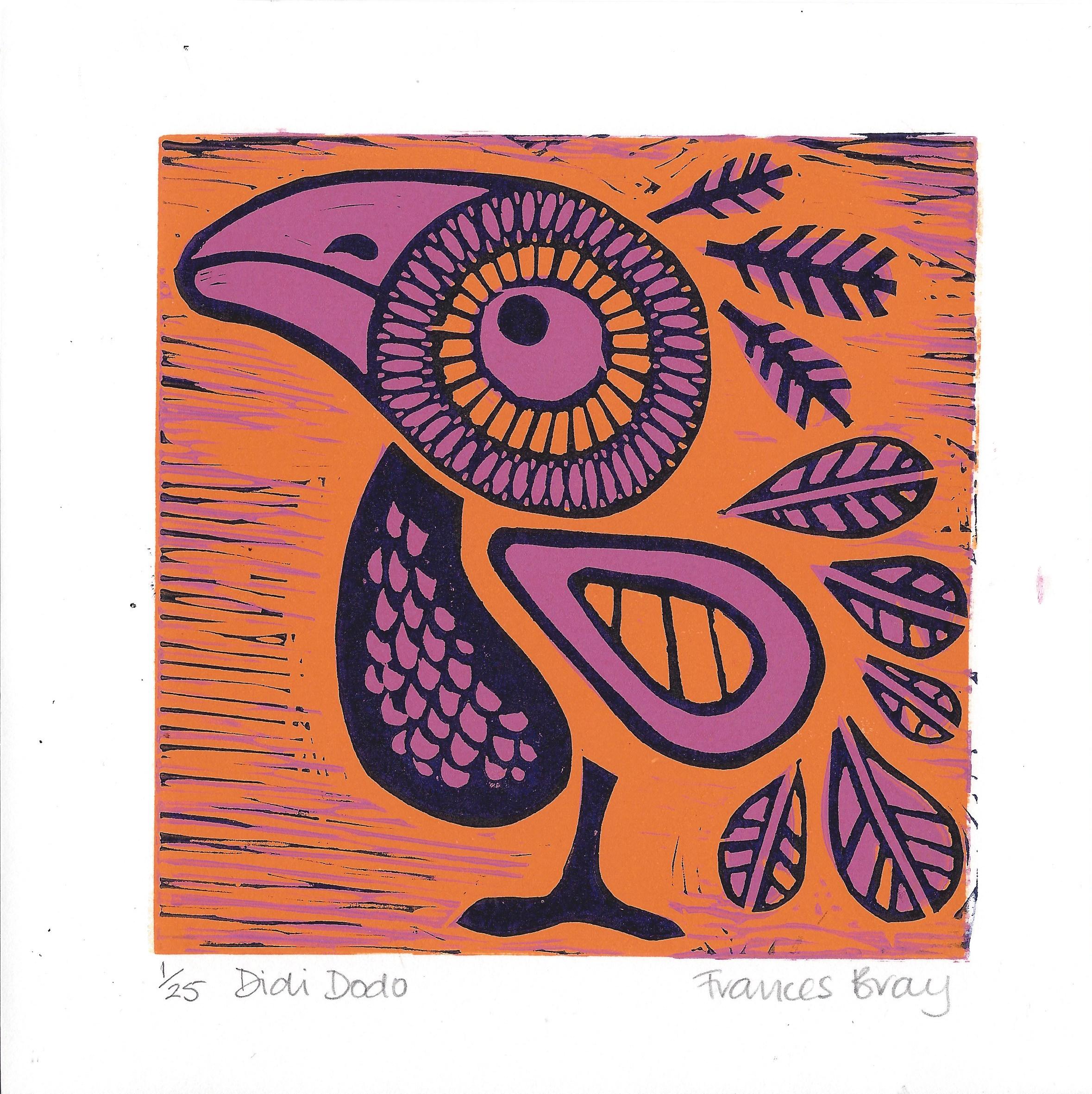 Didi Dodo - F Bray - Hazelnut Press 2015