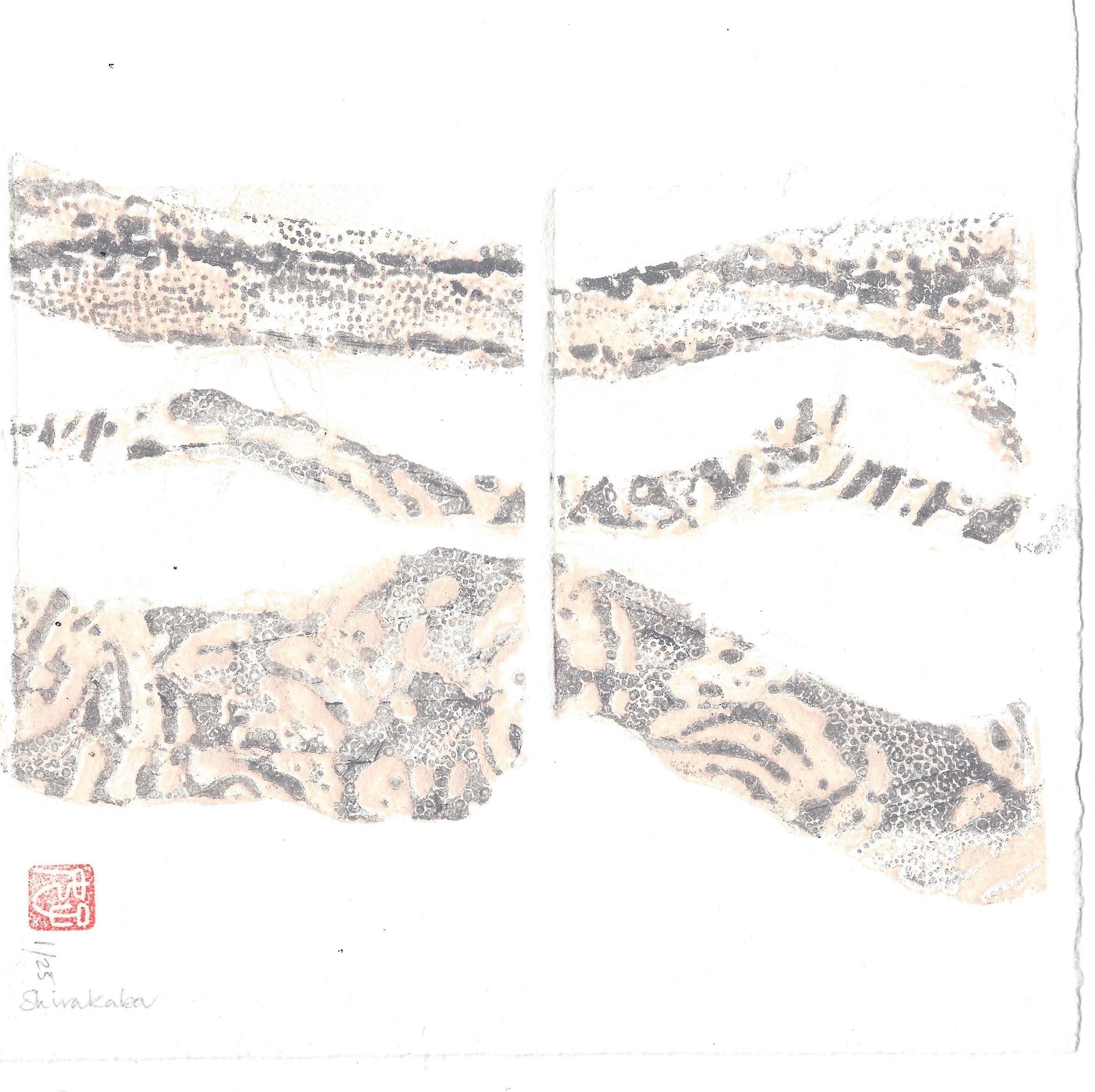 Shirakaba - S Maddocks - Hazelnut Press