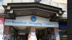 해밀턴-4