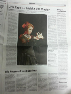 Swiss newspaper in 2013