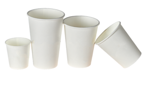 Going Green: Supporting sustainability initiatives by removing Styrofoam from the waste stream