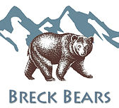 Chainsaw Carvings and and Custom Rustic Accessories from Breckenridge, Colorado.