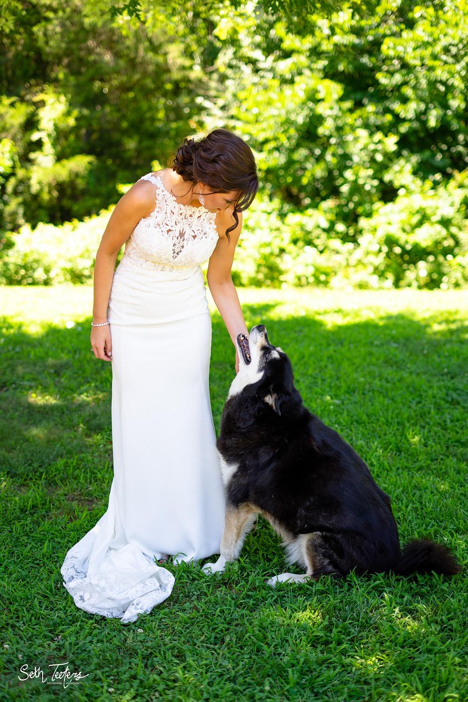 Wedding Day Doggo