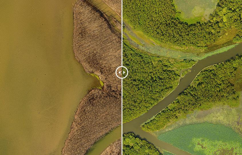 Lake Lemon Aerial Map Comparison.PNG
