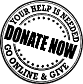 donate trans images.png