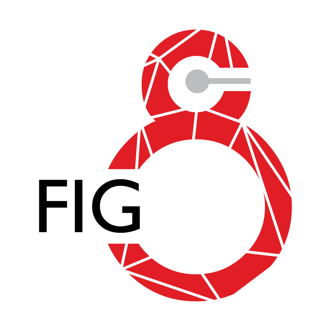 Fig 8 Logo