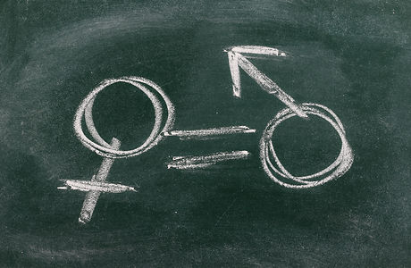 Gender equality concept drawn on chalkbo