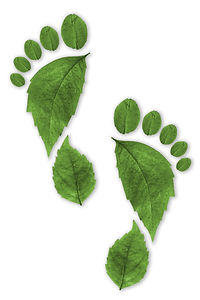 Ecological Footprint sustainability conc