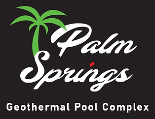 palm springs logo new.PNG
