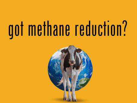 Got Dairy Methane Reduction?