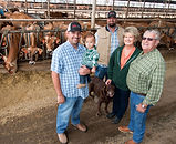 California dairies use energy-efficient practices