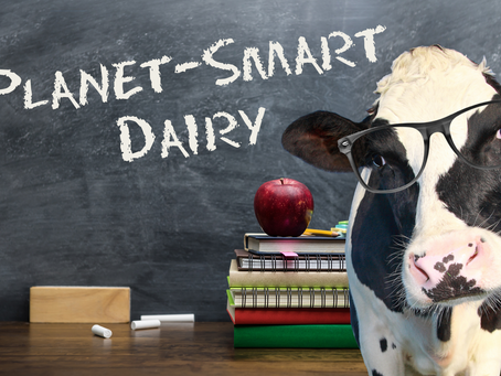 A lesson in planet-smart dairy