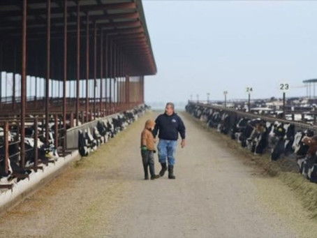 CA's dairy farmers on their way toward planet-smart goals