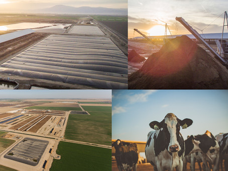 CA dairy farms reach major milestone in climate goal