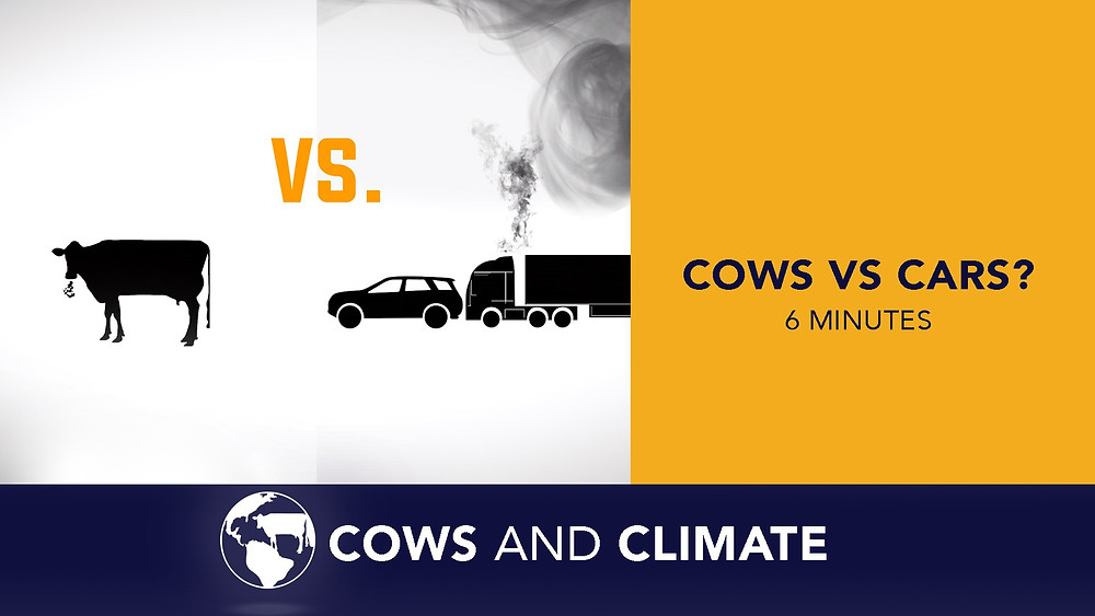 Cows VS. Cars explains the difference between methane from livestock and carbon dioxide emissions from burning fossil fuels.