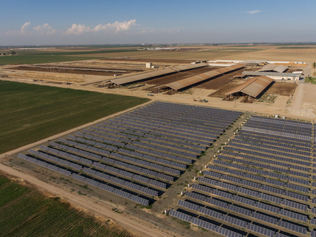 California Dairy Farmers Help Lead the Way for Clean Energy