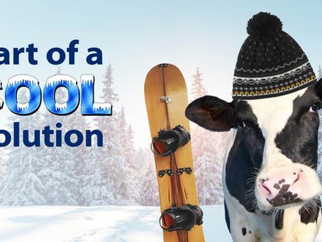 Low-Carbon Dairy: Cows present tremendous mitigation opportunity