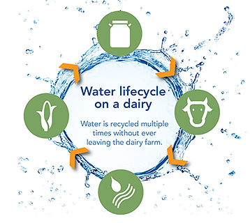 Water recycling on California dairy farm