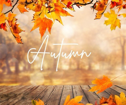 Fall Into Autumn With Our Limited Edition October Treatments