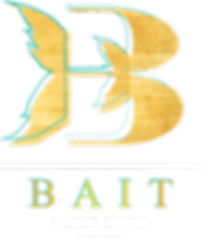 BAIT_LOGO_Medium_Color_White_Transparent