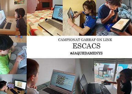 2020 Online ComarcaI Escolar.jpg