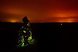 Bioluminescense