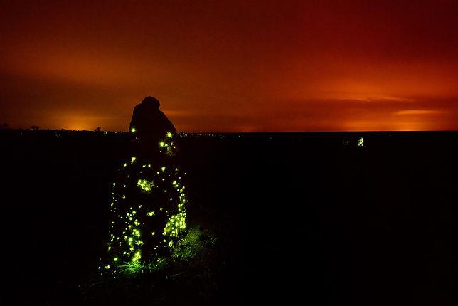 Bioluminescense.jpg
