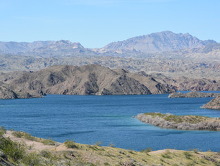 Featured Swimming Spot of the Week - Lake Mohave