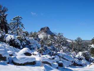 Prescott, AZ: 5 Northern Arizona Stays if You Want to Experience Snow This Christmas Season