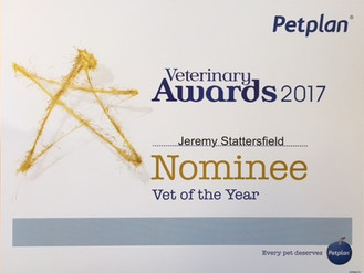 BHVS nominated for Petplan 'Practice of the Year' for the 6th year in a row!