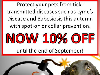 September Tick Protection Promotion!
