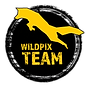 WP TEAM LOGO 2020.png