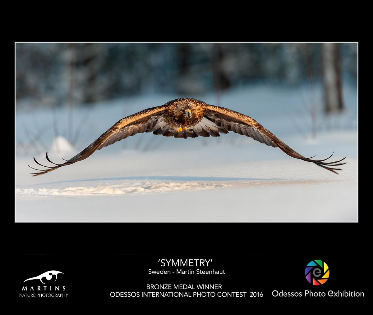 Martinsnature-BRONZE-ODESSOS-2016