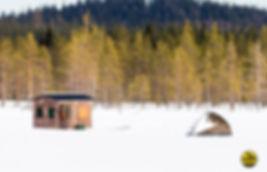 Black-grouse-hide-tent-kopiëren.jpg